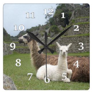 Llamas Square Wall Clock