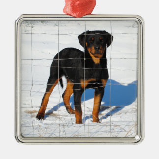 Lobo Rottweiler Metal Ornament