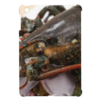 Lobster Cover For The iPad Mini