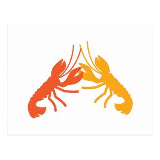 LOBSTER crayfish fighting Postcard