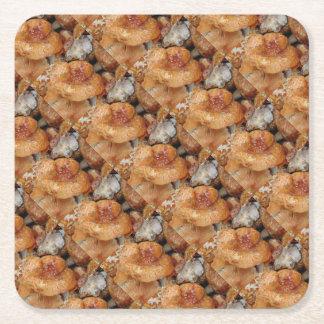 Lobster Mushrooms Square Paper Coaster