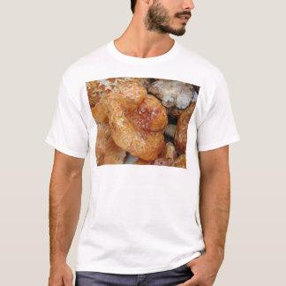 Lobster Mushrooms T-Shirt