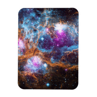 Lobster Nebula Magnet