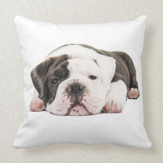 Located English bulldog puppy Throw Cushions