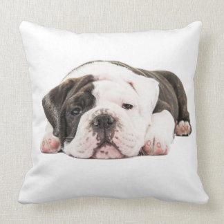 Located English bulldog puppy Throw Cushions