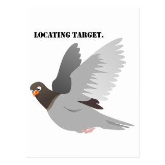 Locating Target Gray Pigeon Cartoon Postcard