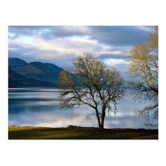 Loch Ness, Scotland Postcard