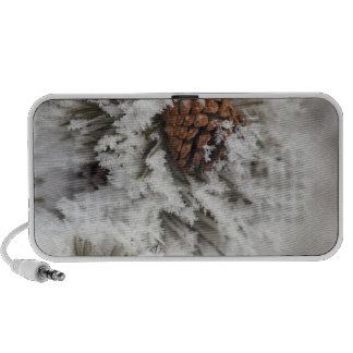 Lodgepole Pine cone in winter in Yellowstone Notebook Speaker