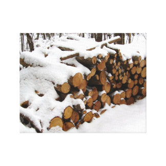 Log Pile in the Woods Canvas Print