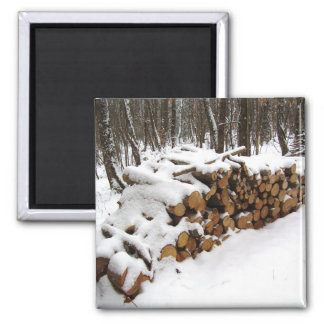 Log Pile in the Woods Magnet