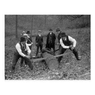 Log Sawing Contest, 1924 Postcard