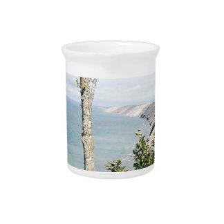 Log slide pitcher