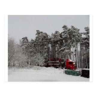 Logger Postcard