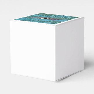 Loggerhead Sea Turtle Favour Box
