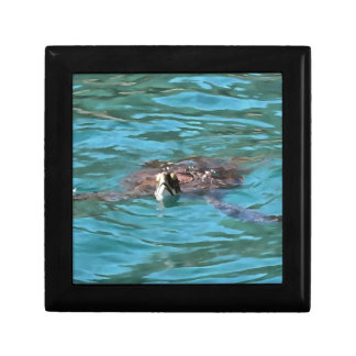 Loggerhead Sea Turtle Gift Box