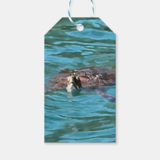 Loggerhead Sea Turtle Gift Tags
