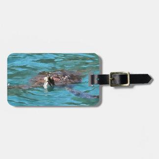 Loggerhead Sea Turtle Luggage Tag