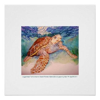 Loggerhead Sea Turtle Print