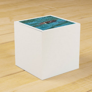 Loggerhead Sea Turtle Wedding Favour Box