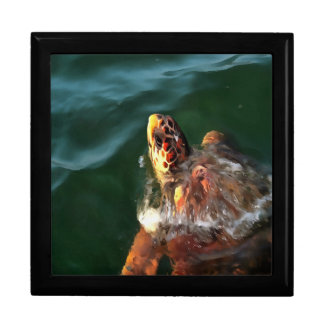 Loggerhead Turtle Gift Box
