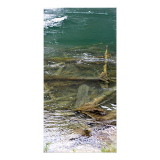 Logs in the Lake Photo Card