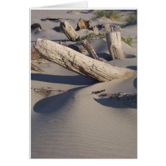 Logs on Oregon Beach Card