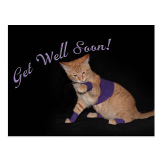 Loki s Get Well Wishes Postcards