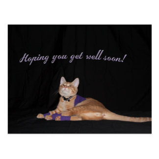Loki s Get Well Wishes Post Card