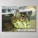 LOLturtle - rub mah belleh Poster