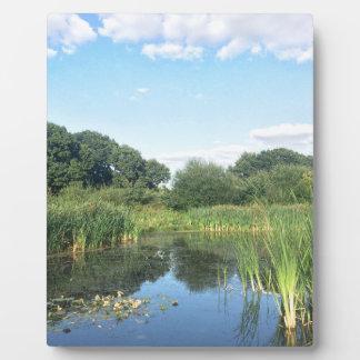 London - UK Pond Plaque