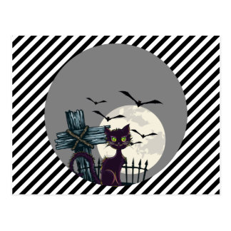 Lone Black Cat in Graveyard with Full Moon Bats Postcard