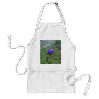 Lone Blue-Purple Anemone Standard Apron