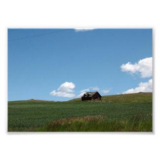 Lone Cabin Photo Print