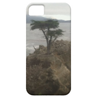 Lone Cypress Case For The iPhone 5