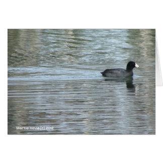 Lone Duck II Card