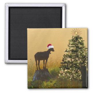Lone Goat Marvels At Christmas Tree Refrigerator Magnet