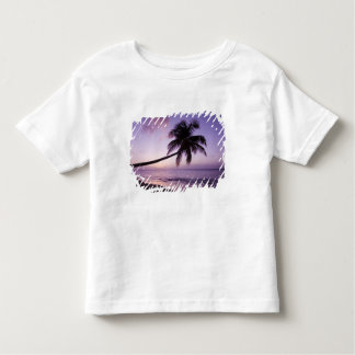 Lone palm tree at sunset, Coconut Grove beach 2 Shirts