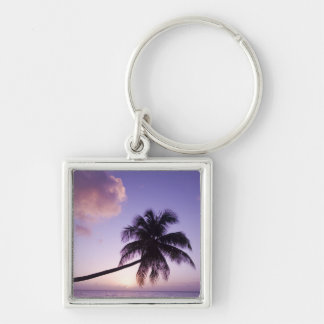 Lone palm tree at sunset, Coconut Grove beach Silver-Colored Square Key Ring