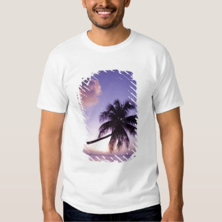 Lone palm tree at sunset, Coconut Grove beach Tshirts