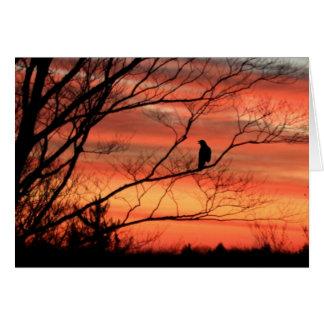 Lone Raven Calling Card