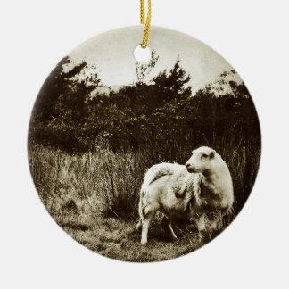 Lone Sheep Round Ceramic Decoration