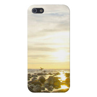 Lone Surfer iPhone 5/5S Case