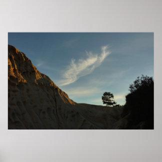 Lone Torrey Pine California Sunset Landscape Poster