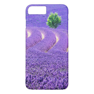 Lone tree in Lavender Field, France iPhone 7 Plus Case