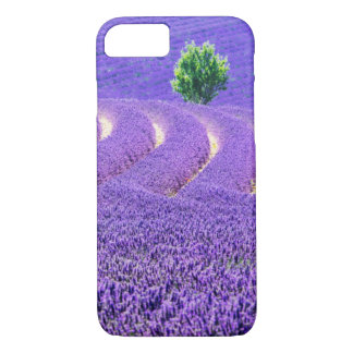 Lone tree in Lavender Field, France iPhone 8/7 Case