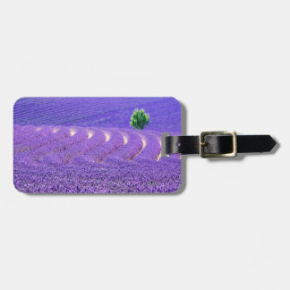 Lone tree in Lavender Field, France Luggage Tag