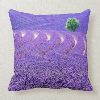 Lone tree in Lavender Field, France Throw Pillow