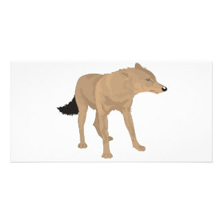 Lone Wolf -Mystery Canine Photo Card Template