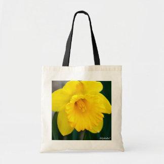 Lone Yellow Daffodil
