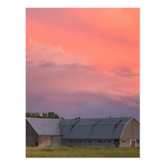 Lonely Barn Postcard